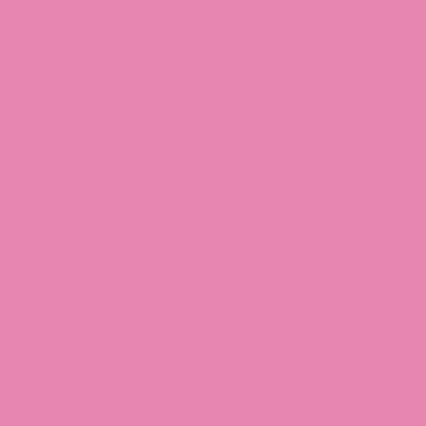 Montana Acrylic Marker 15mm S4000 Pink Light EAN4048500323195